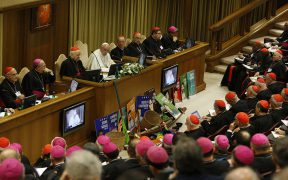 POPE OPENING SESSION SYNOD AMAZON